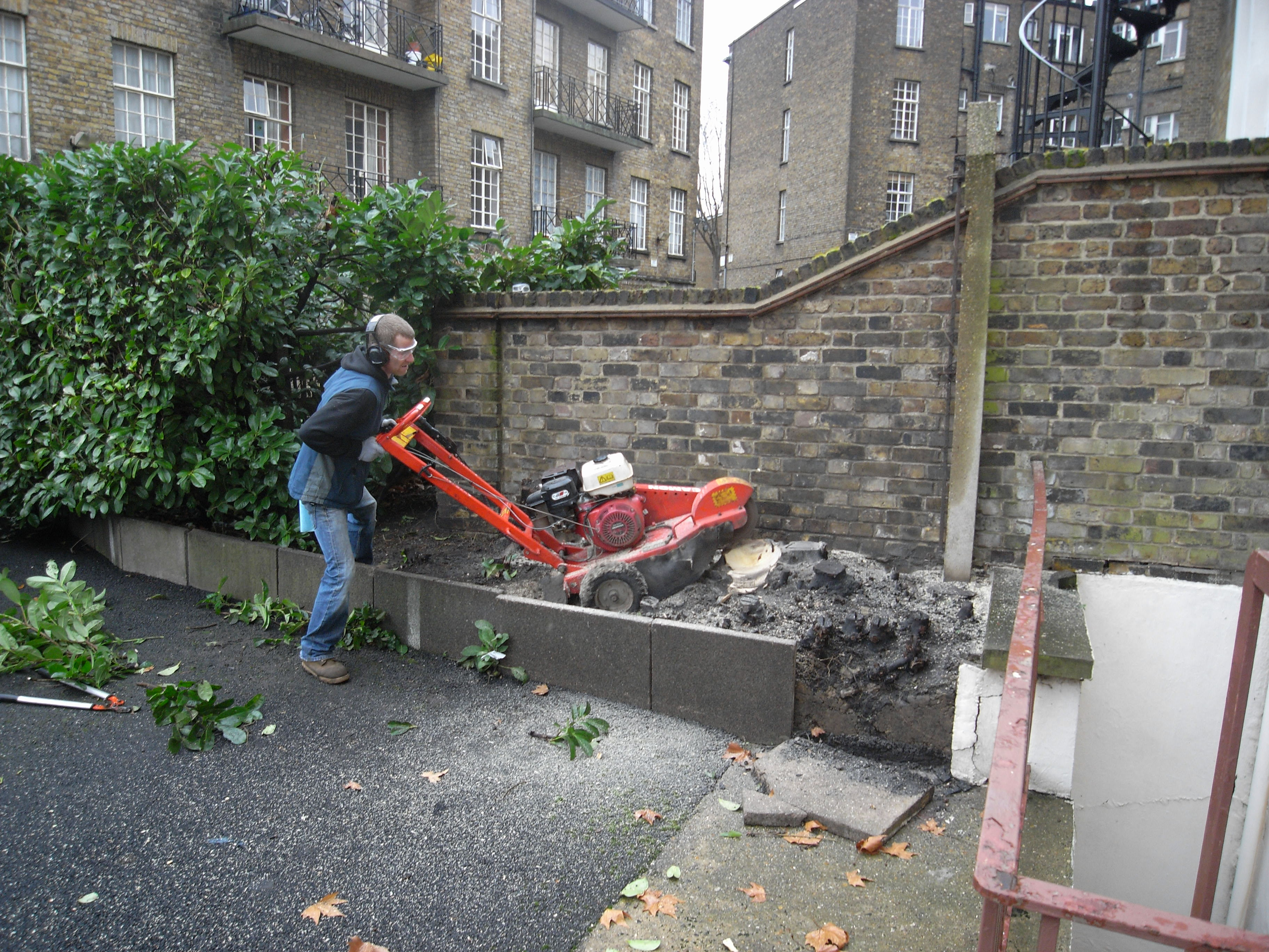 Diversity gardens tree care and removal for Garden maintenance van